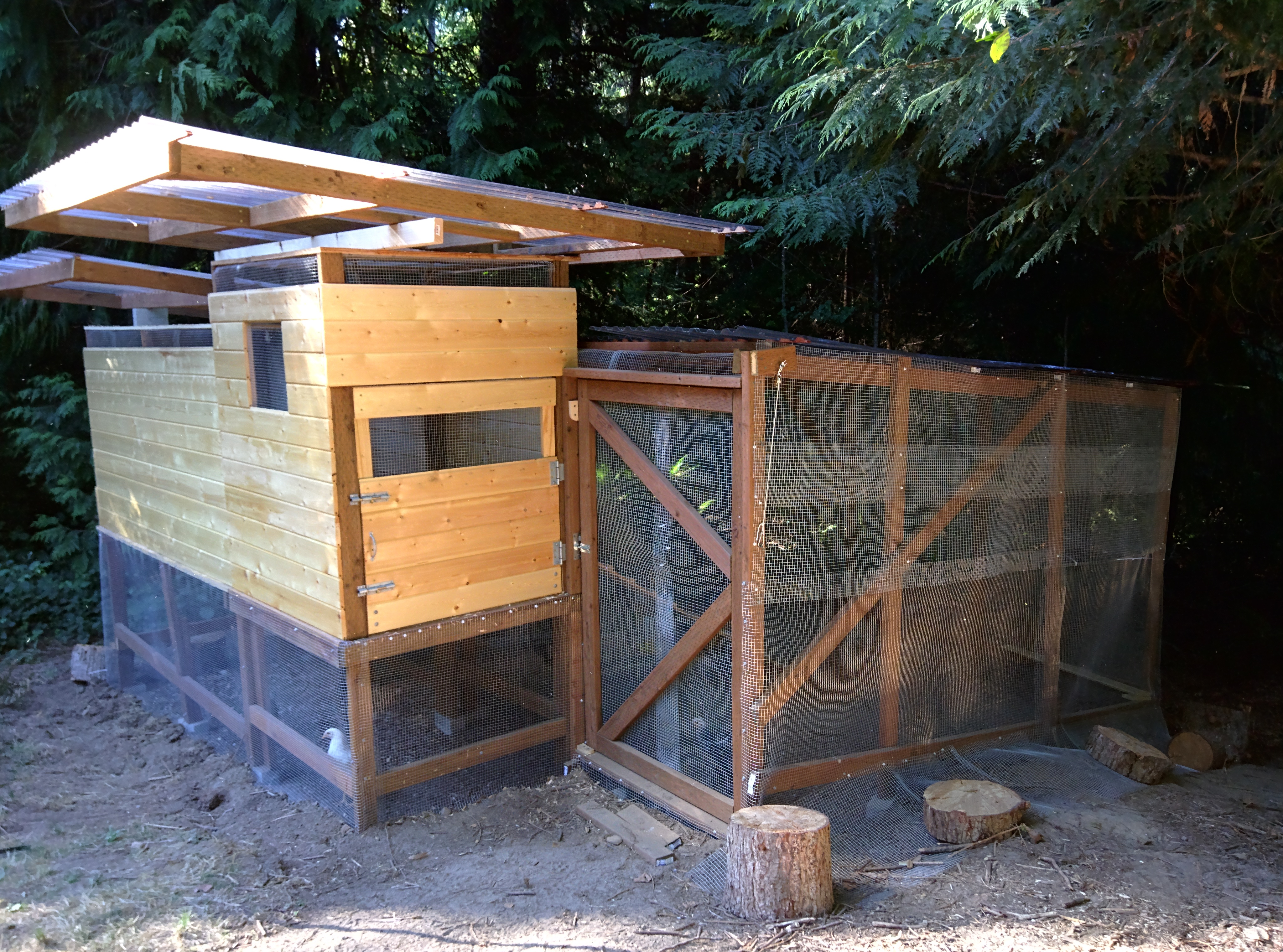The final chicken coop without a nesting box